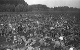 老照片:戰爭時期罕見照,圖4士兵騎著野豬,圖5為奇葩防毒面具