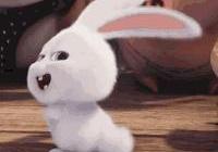 沒想到被一隻反派頭小兔子圈粉了,這表情包又可以讓我用幾天了