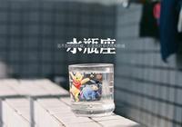 松柏語錄——水瓶座