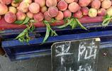 大叔開三輪過黃河賣甜桃,自家地裡種八畝,10元6斤隨便挑,不讓顧客吃虧會多給一個