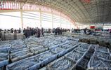 吃貨有福了!今年海鮮價格大跳水,帶魚、黃魚只賣10塊一斤