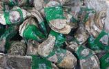 西安海鮮市場火爆,海鮮銷售不愁