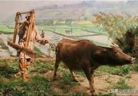 俗語:寧願鄰居養條牛,不願鄰居出諸侯,為何?有什麼道理?