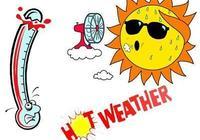 夏日高溫易中暑,藿香正氣是良方?