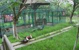 坐落在江南水鄉上海淀山湖畔的大千生態莊園