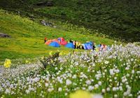 週末露營 九頂山後山 徒步雲端露營賞花