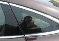 """開了這麼多年的車,卻不知道""""三角窗""""有啥用?老司機:太惋惜了"""