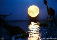 今夜,送你一輪東坡的月亮