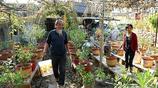村民都說大爺靠花園發了財,他卻說是冰山一角,致富還有其他辦法