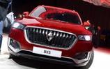 汽車圖集:寶沃 BX5