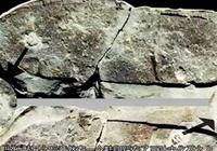 3億年前三葉蟲化石上的人類腳印,到底是不是真的?