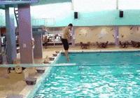 男子跳水,被板玩