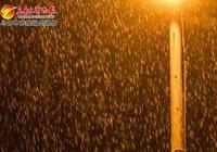 今晨光聽雨了 實拍:烏魯木齊下的雨有多大