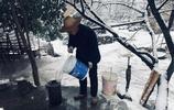 秦嶺大雪,親鄰互幫,在冰天雪地中帶來一絲絲暖意