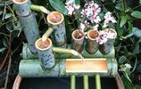 創意庭院魚池過濾裝置