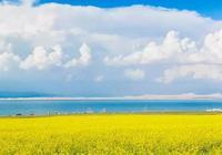 「浪在大西北」一次1600公里的青海穿越,遇見半個中國的美