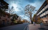 圖蟲風光攝影:墨爾本大學