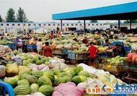 瓜果蔬菜6日價格——新發地蔬菜批發市場
