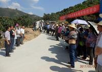 元江:抓住關鍵時期 做好果實蠅防治
