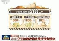 中儲糧、央企收購進入市場,各方急需玉米,糧價要大漲!