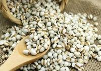 薏米養生,但你知道薏米的具體功效嗎?