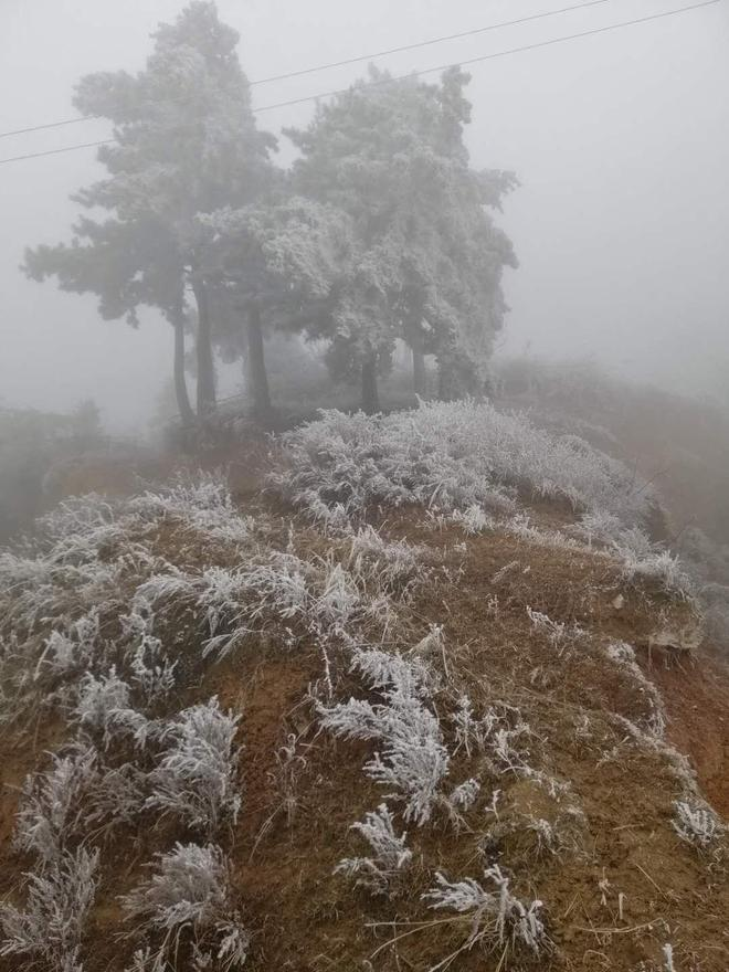 黃土崗成家山上霧凇,有多少人會去看?