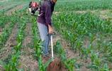 堅決不用旋耕機!有了這新型農具,幹活快效率高,一天百畝賊輕鬆