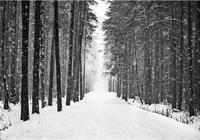 大雪天迷失浙北第二高峰兩驢友失聯五天