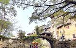 距離桂林2小時有一個千年古鎮,300多棟明清民居宛若世外桃源