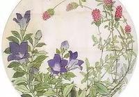 置愛 | 這個日本人100年前畫的植物真是美瘋了