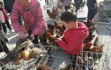 農村大集上野味真多,農民老伯賣稀罕物20元一隻,引眾人圍觀