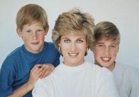 憶起與黛妃的人生最後一通電話!英國哈利與威廉王子懊悔抱憾終生