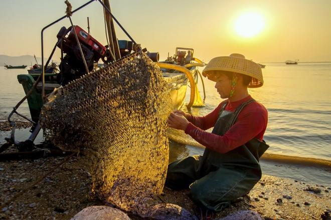 """""""大美漁村,平安漁業""""——中國漁業攝影展"""