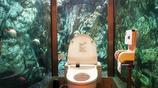 下面這幾個廁所你敢上幾個呢?最後一個估計你們絕對接受不了
