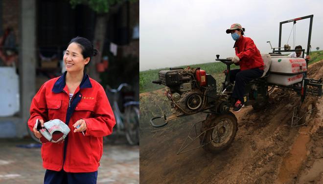 80後白領美女辭職回鄉包地5000畝 帶全村農民致富