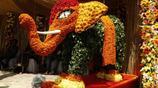 孟加拉國鮮花節