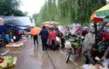 雨天早市老人賣稀罕物1元1捆,農村用來餵豬,人能吃嗎?