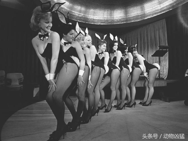 """海夫納的""""花花公子""""兔女郎進化史"""