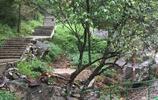 遊玩出行 杭州神龍川風景區旅遊遊記 春秋是自然色彩最繽紛