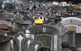 吉隆坡:清明掃墓
