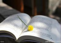 為什麼你讀書總是讀了又忘?是因為你沒掌握這個方法!