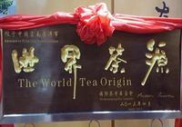 紀檢人鏡頭:普洱茶 一片樹葉的故事