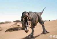 霸王龍的尾巴有多長?