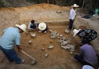 徐州農民挖到夫妻合葬墓,文物販子出價50萬被拒,卻無償捐獻國家