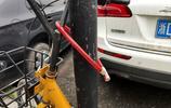 據說小黃車開始退押金了!實拍杭州ofo,車輛上私鎖已成私家車!