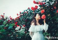 和花拍照擺什麼姿勢好看?史上最文藝的自拍「花海拍照Pose大全」