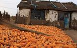 實拍:農村六旬老人窮得沒米吃,兒女不給寄錢,村裡人卻說做得對