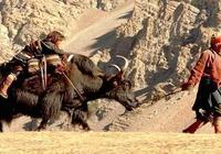 電影《喜馬拉雅》
