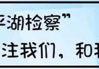 平湖市委書記祁海龍一行至平湖市檢察院調研