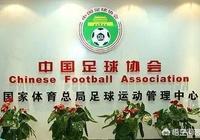 為什麼中國足協不效仿中國籃協,讓專業的退役球員當主席?
